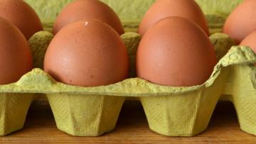 Alergia na jajka